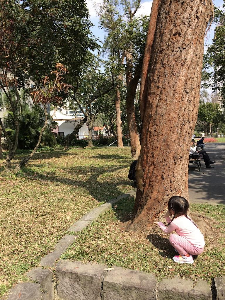 f:id:kuramae-taiwan:20181224214346j:plain