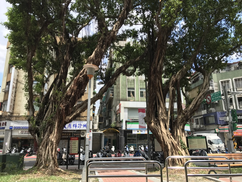 f:id:kuramae-taiwan:20181229113851j:plain