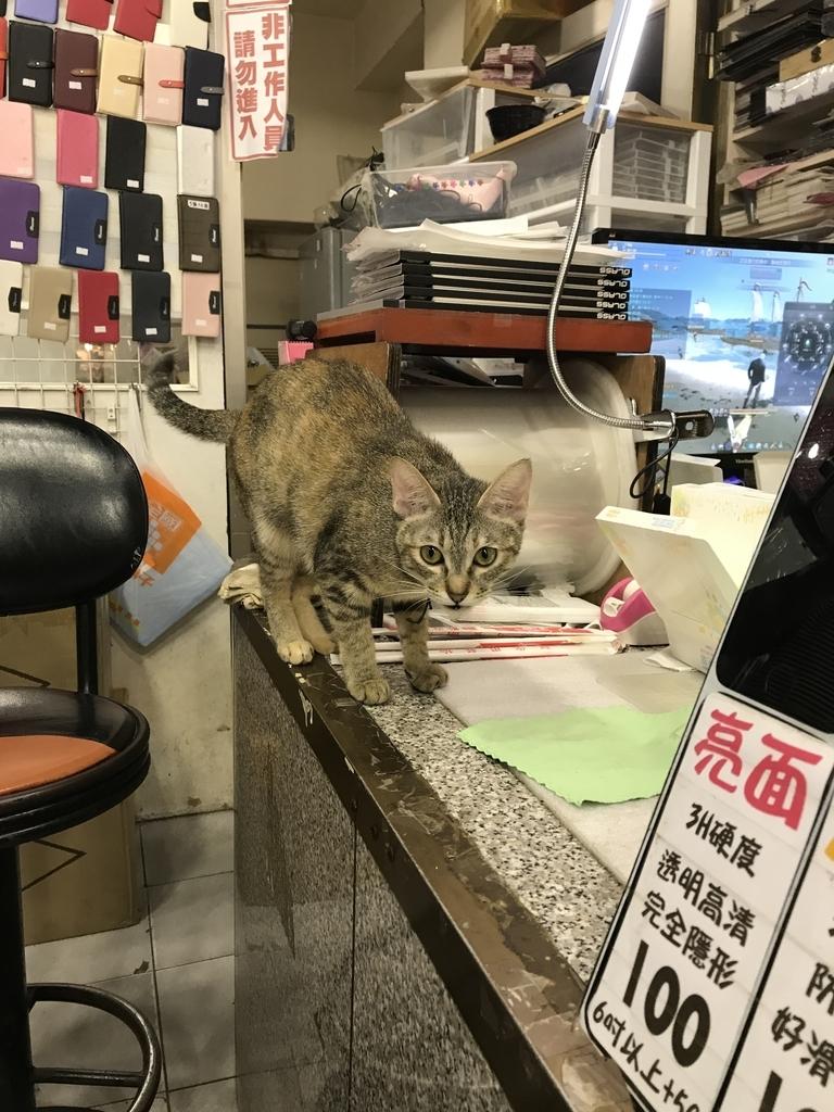 f:id:kuramae-taiwan:20181229150114j:plain