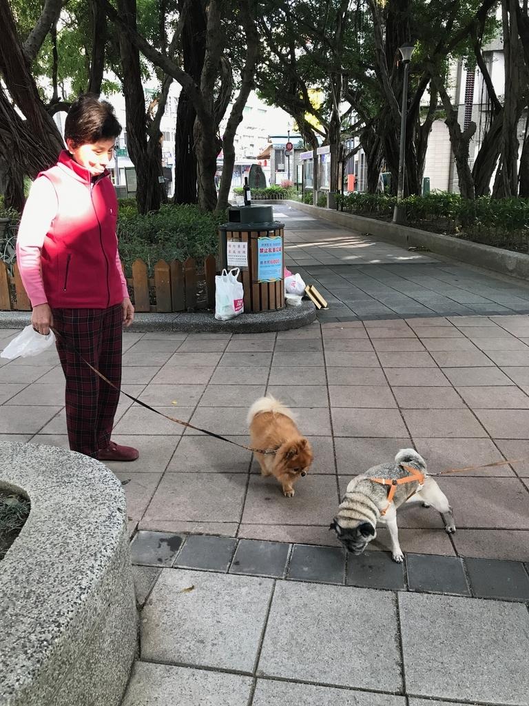 f:id:kuramae-taiwan:20181230180840j:plain