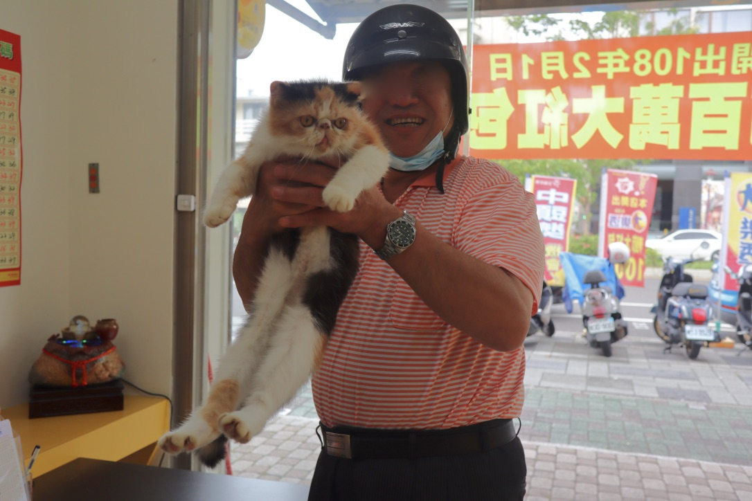 f:id:kuramae-taiwan:20191003005240j:plain