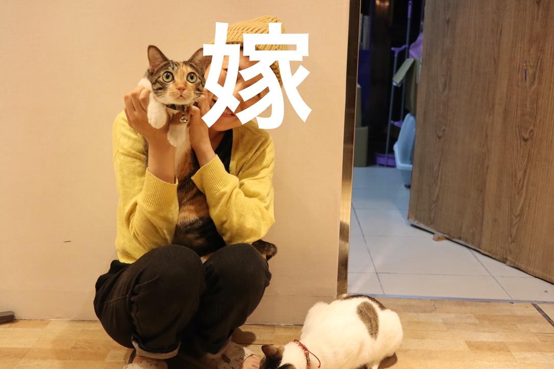 f:id:kuramae-taiwan:20191201170158j:plain