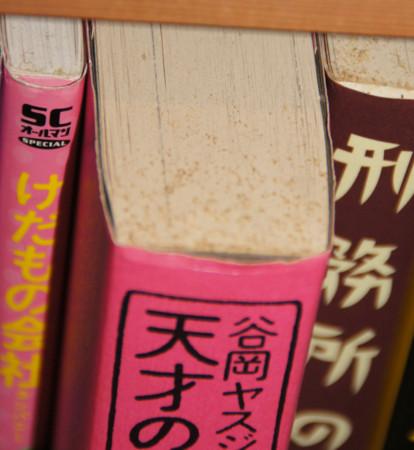 f:id:kuramae_jinichi:20120808081739j:image:left