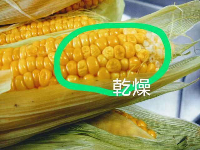 f:id:kurashi-no-memo:20210610103612j:image
