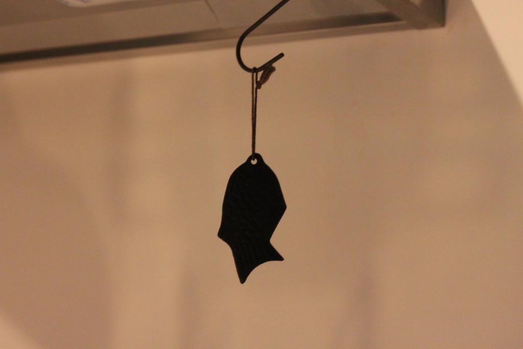 鉄の健康鯛5