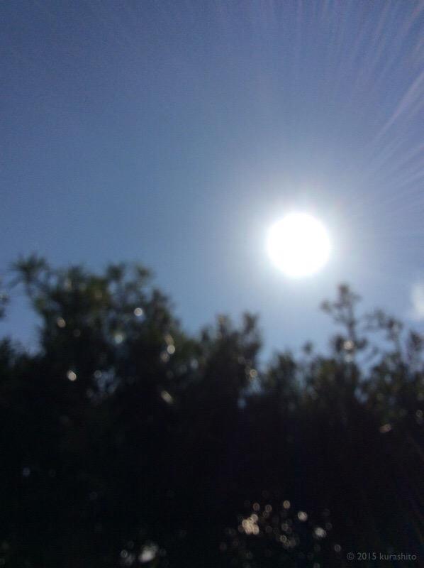 12月の太陽