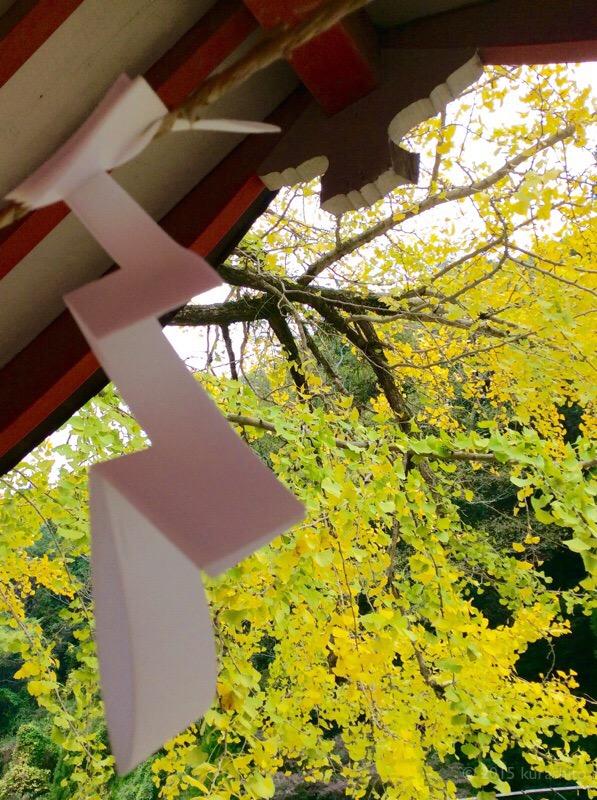 紅葉の神社