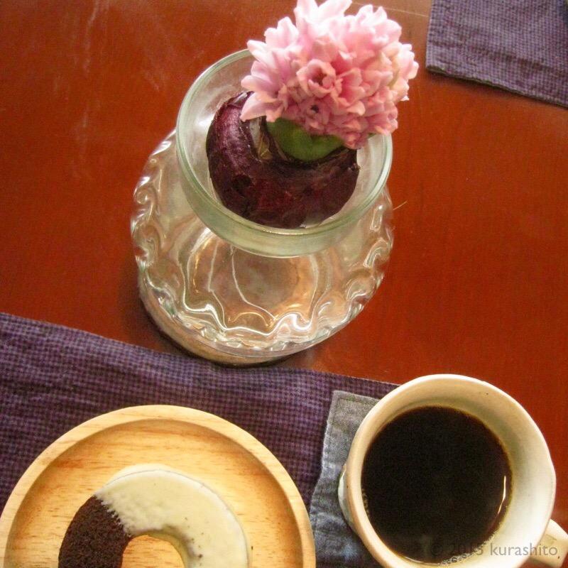 食卓に、水耕栽培のヒヤシンス。