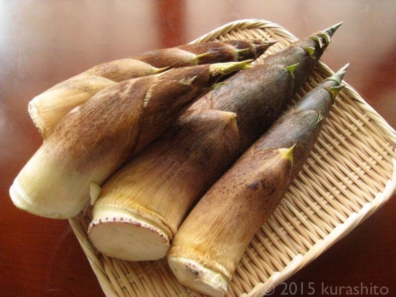タケノコの季節。