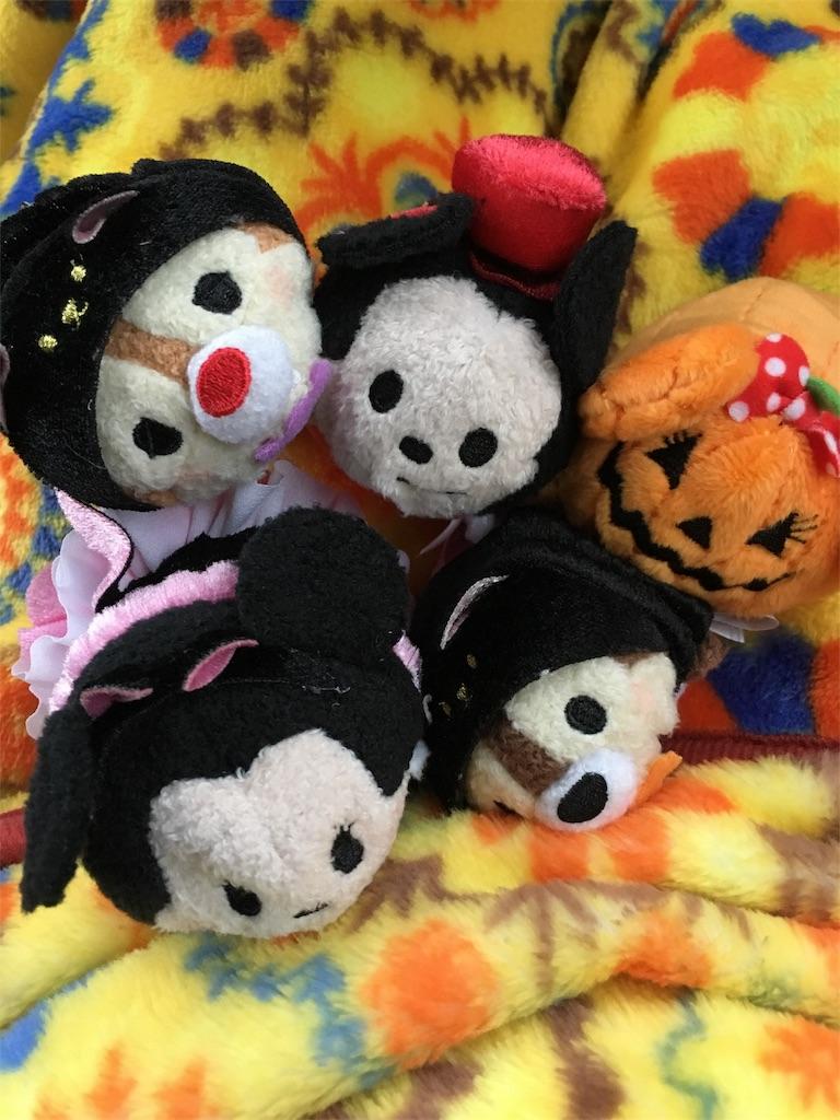 f:id:kurikanoco:20161017080030j:image