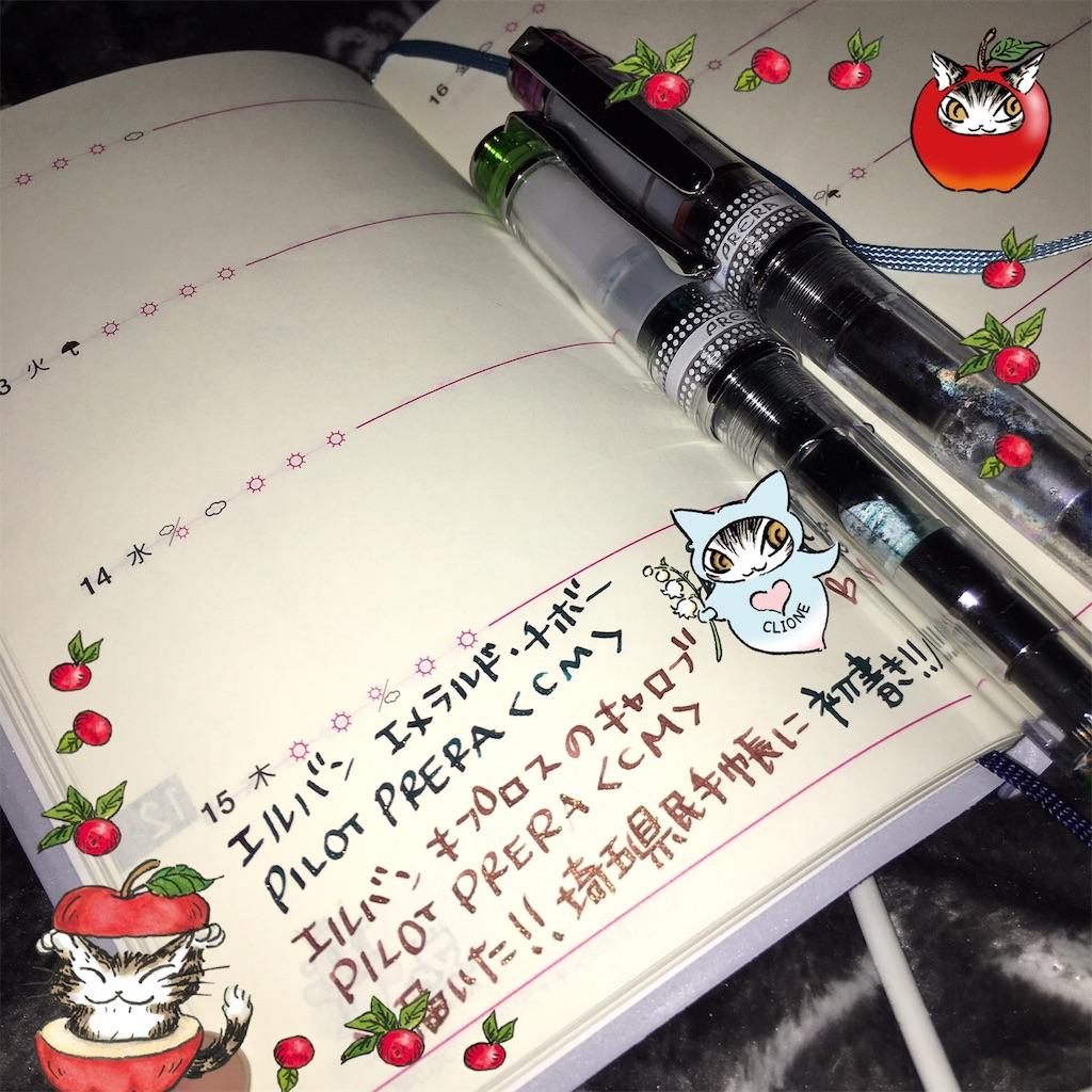 f:id:kurikanoco:20161216062012j:image