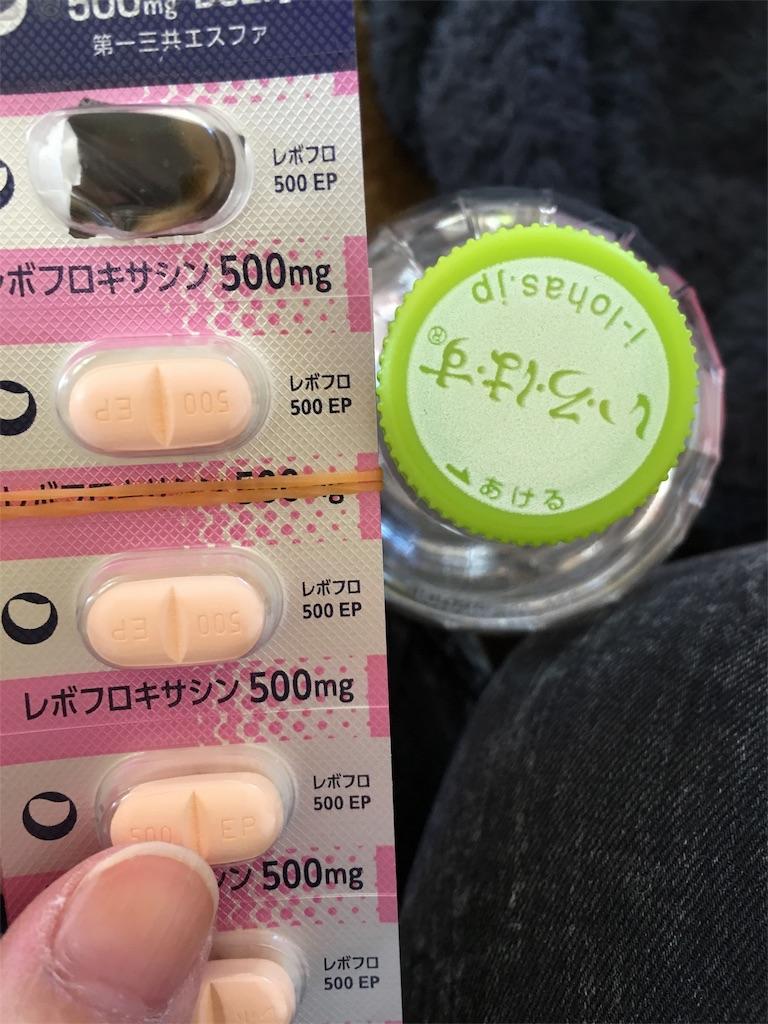 f:id:kurikanoco:20170311233716j:image