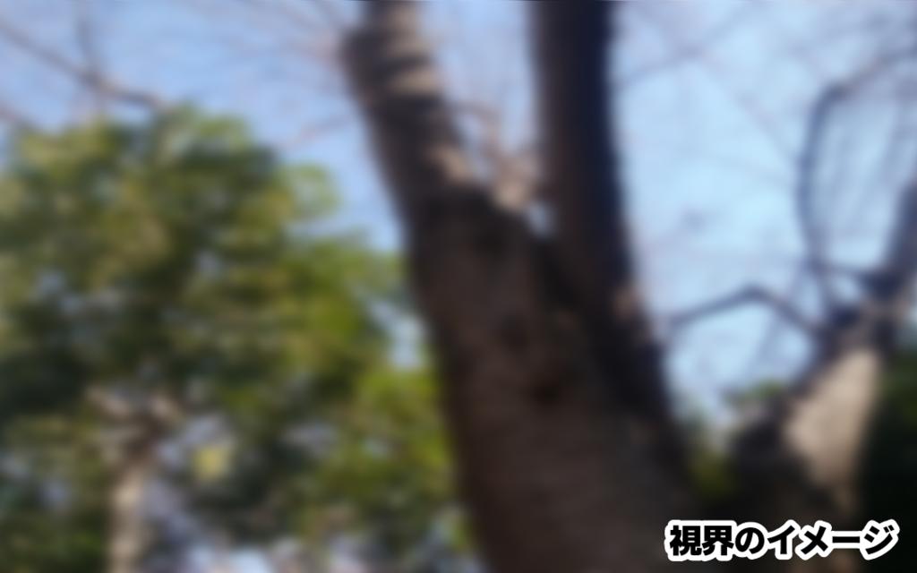 f:id:kurikanokoo:20190205211052p:plain