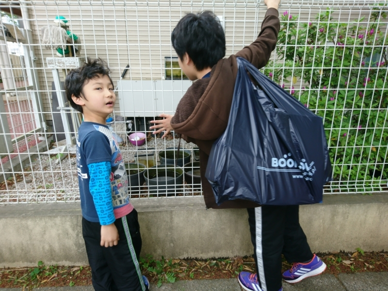f:id:kurikobushi:20180415174922j:plain