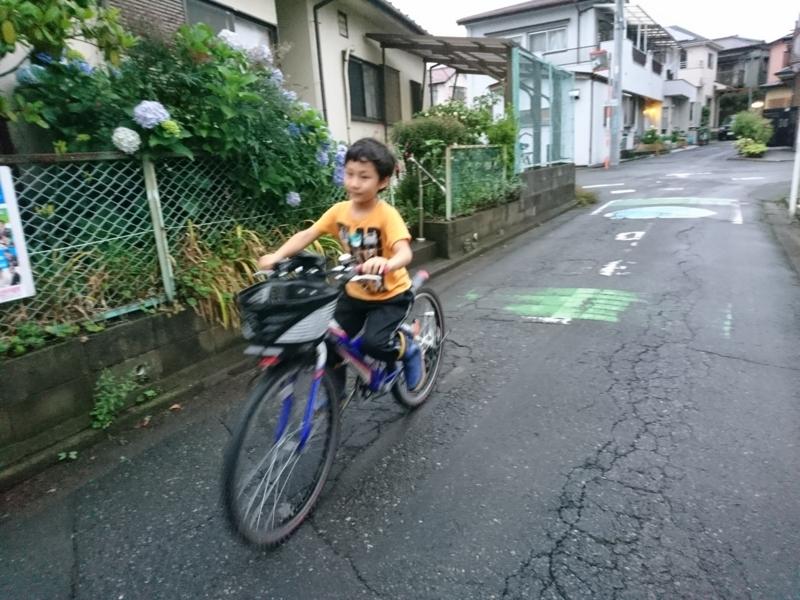 f:id:kurikobushi:20180620220435j:plain