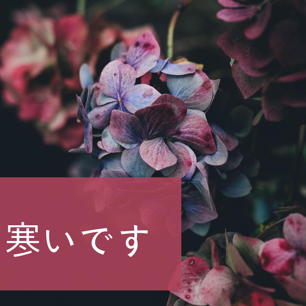 f:id:kurikuri421:20190111010300p:image