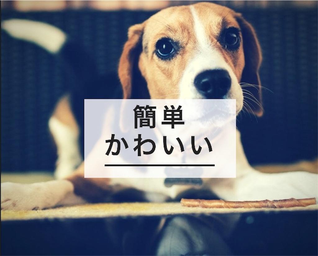f:id:kurikuri421:20190131201753j:image