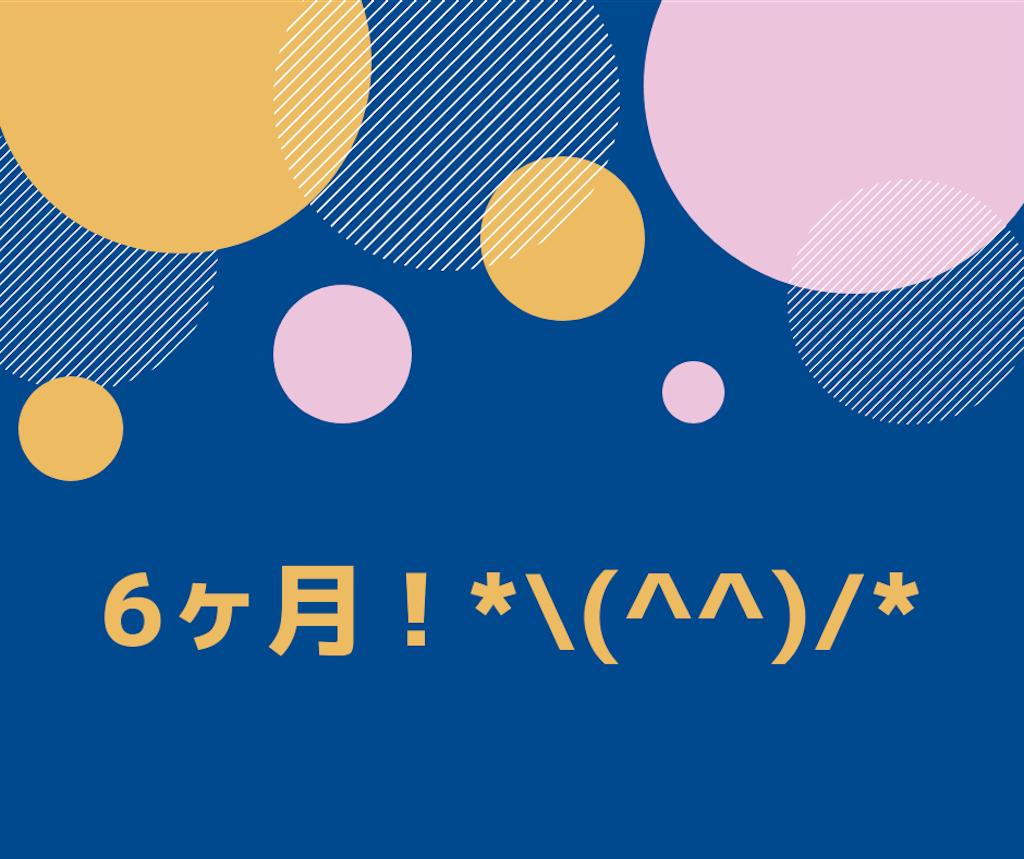 f:id:kurikuri421:20190202232502p:image