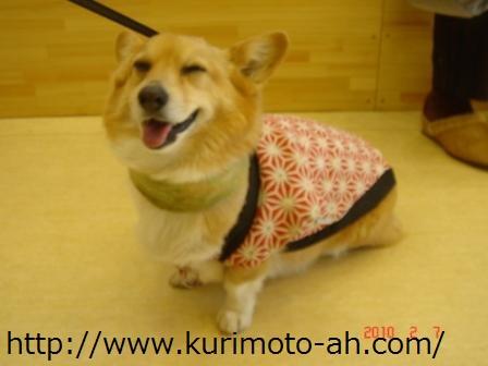 f:id:kurimotoah:20100207112940j:image:w360