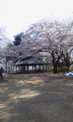 f:id:kurimotoah:20110412150222j:image