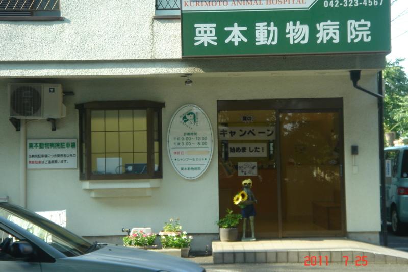 f:id:kurimotoah:20110725161104j:image:w360