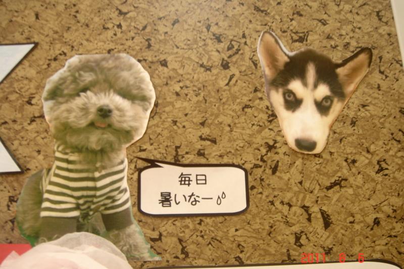f:id:kurimotoah:20110806142258j:image:w360