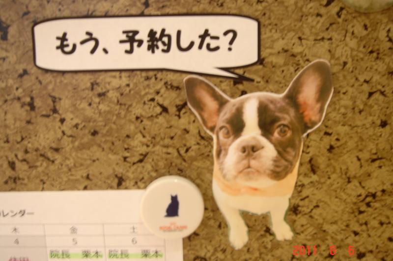 f:id:kurimotoah:20110806142321j:image:w360