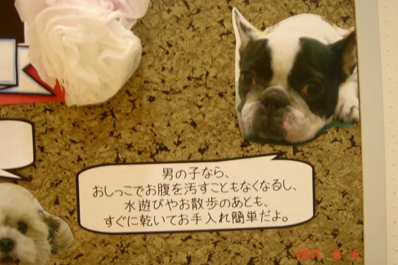 f:id:kurimotoah:20110806191951j:image:w360