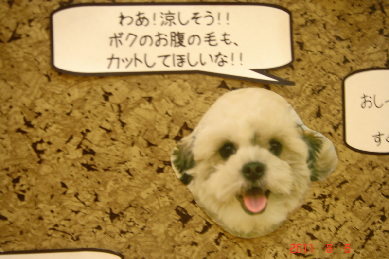 f:id:kurimotoah:20110806191958j:image:w360