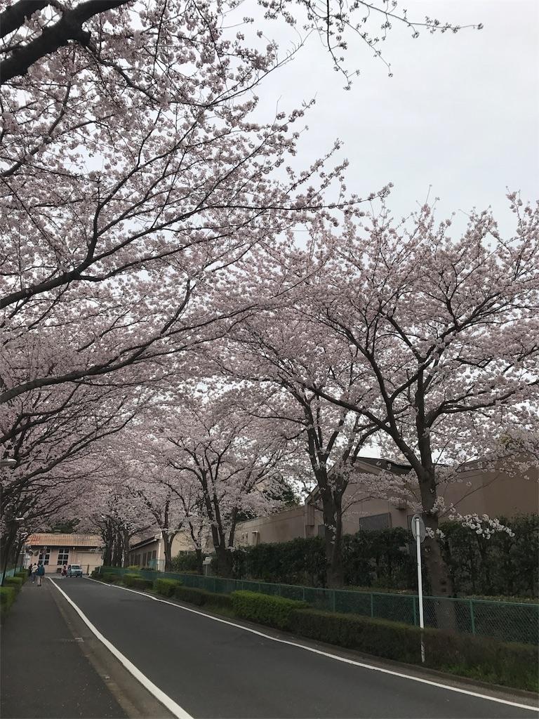 f:id:kurimotoah:20170419180816j:image