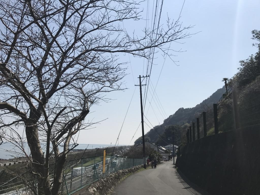 f:id:kurinikomi-hara:20180417185931j:plain