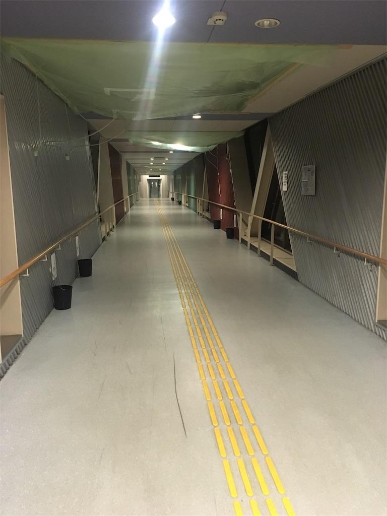f:id:kuriyama-iju:20181205210727j:image