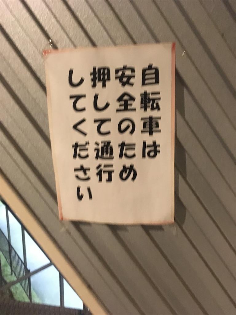 f:id:kuriyama-iju:20181205211338j:image