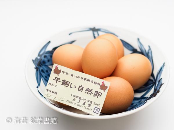 f:id:kuriyama-iju:20181231091742j:plain