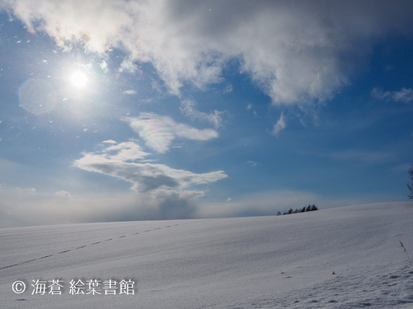 f:id:kuriyama-iju:20190102221057j:plain