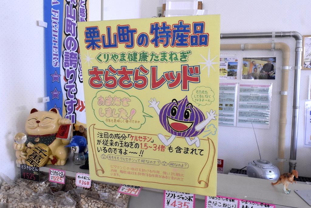 f:id:kuriyama-iju:20190129174737j:plain