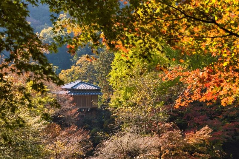寺 因 行道 浄 山