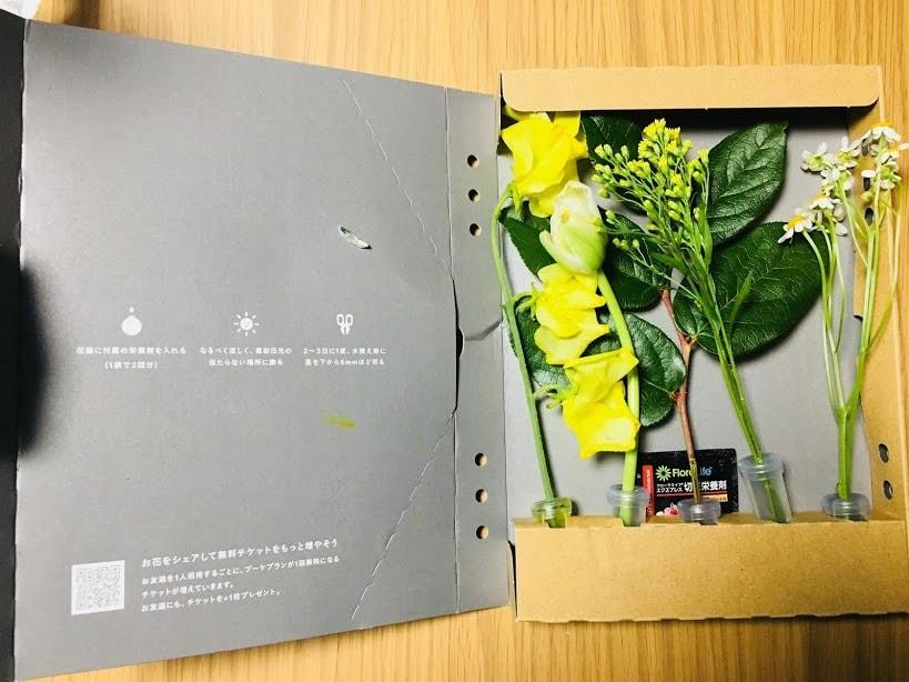 f:id:kuro-yan:20190312085430j:plain