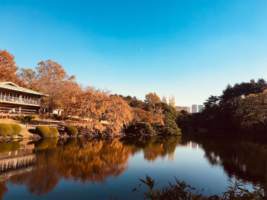 f:id:kuro-yan:20191204212113j:image
