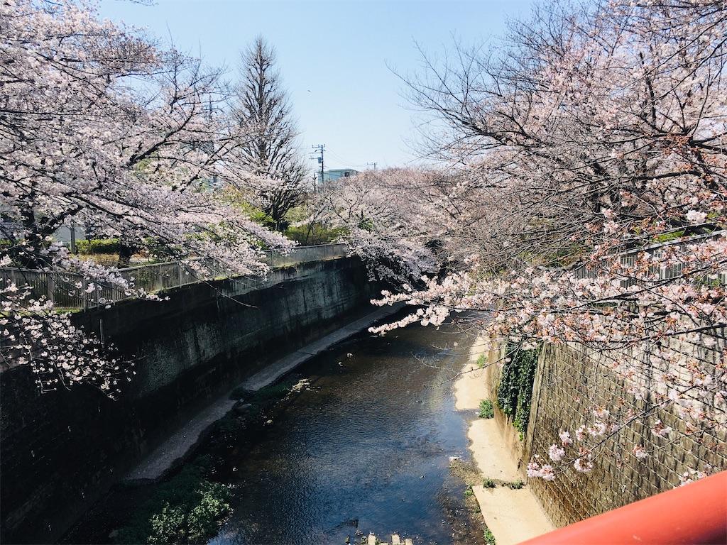 f:id:kuro-yan:20210326214021j:image