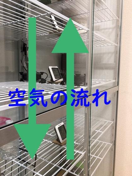 f:id:kuro1_dia:20190203090006j:plain