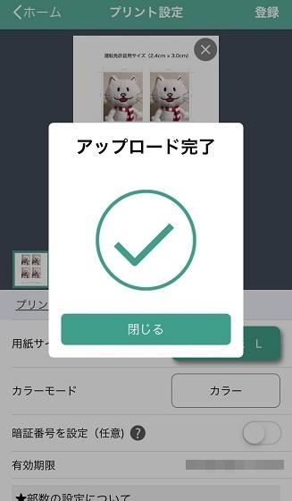 f:id:kuro1_dia:20190310202918j:plain