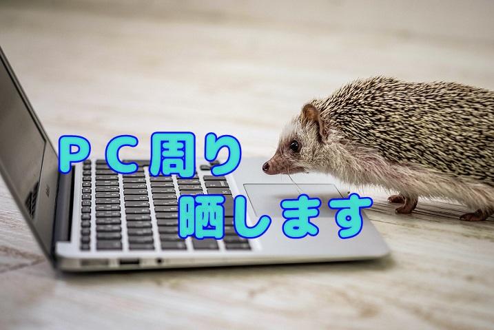 f:id:kuro1_dia:20191019201336j:plain