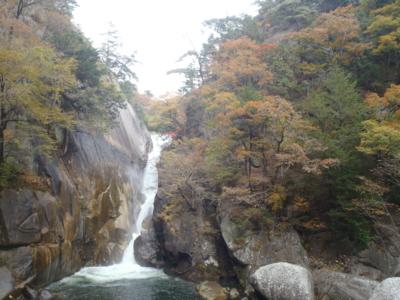 f:id:kuro4ro:20101114110820j:image