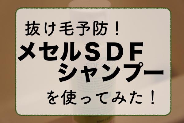 f:id:kuro6kuro6:20170922151933j:plain