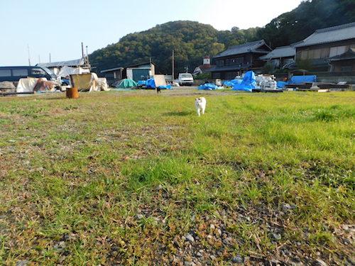 f:id:kuro6kuro6:20171221002259j:plain