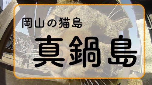 f:id:kuro6kuro6:20171221010759j:plain