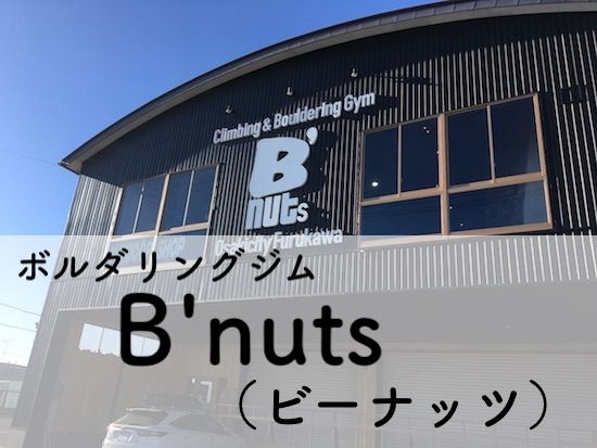 ボルダリング Climbing Gym B'nuts クライミングジム ビーナッツ ピーナッツ レビュー