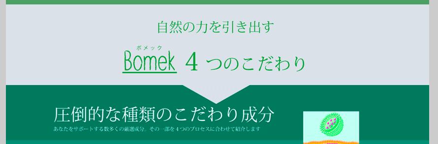 f:id:kuro6kuro6:20181220125812p:plain