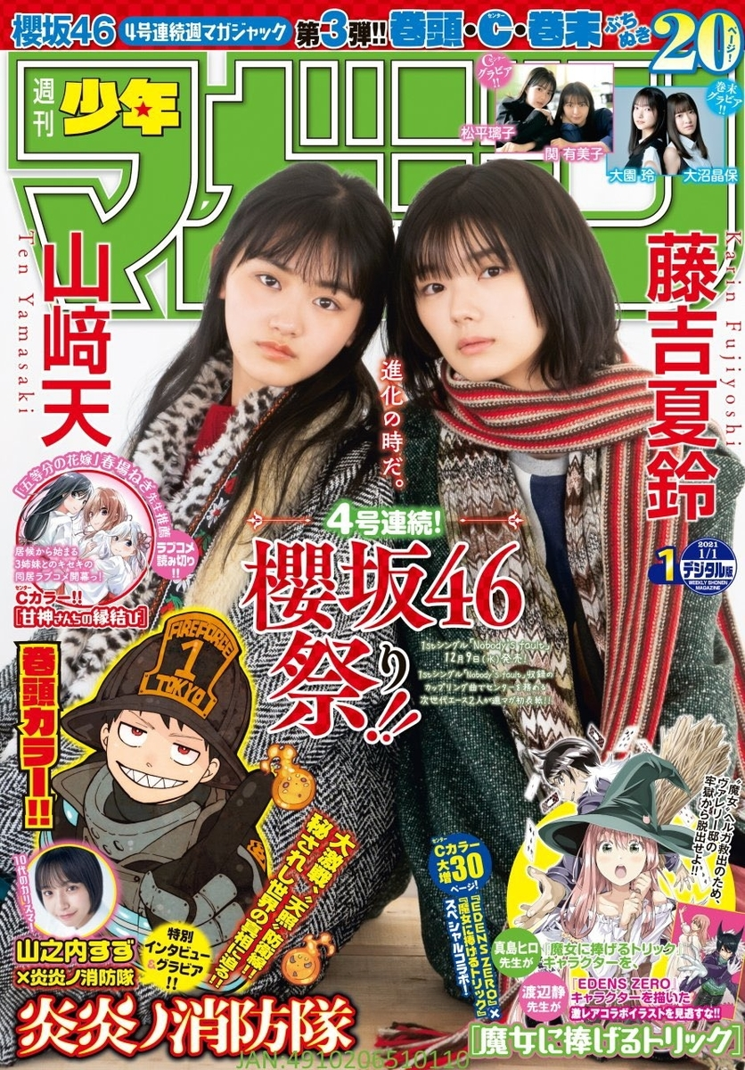 f:id:kuro_yagi_U:20201202011518j:plain